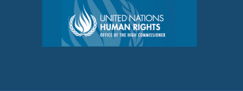 Statement for 28 September by four UN human rights experts